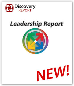 DISC leadership personality profile
